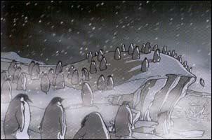 waar wonen penguins